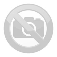 EVECUBE 2S - 2x22kW AC charging station (Smart WebServer + RFID + consumption measurement + WiFi)